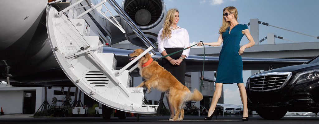 Pet travel by Private Jet | 'Furs Class' service | Privaira